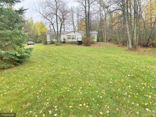 608 4th Street NW, Kelliher, MN 56650 (#6114380) :: Reliance Realty Advisers