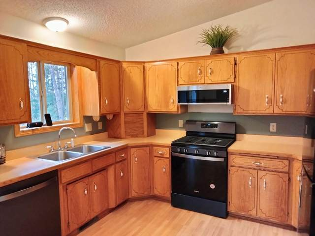 6373 375th Street, North Branch, MN 55056 (#6114619) :: Reliance Realty Advisers