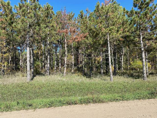 42195 295th Street, Ottertail, MN 56571 (#6116670) :: Lakes Country Realty LLC