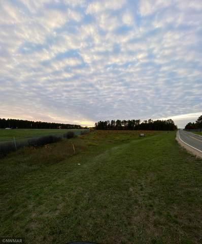 TBD NW Gillette Drive NW, Bemidji, MN 56601 (#6119932) :: Helgeson Platzke Real Estate Group