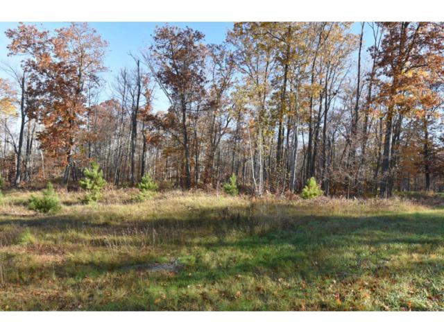 Lot2, Block1 Elk Horn Court, Merrifield, MN 56465 (#4435239) :: Olsen Real Estate Group