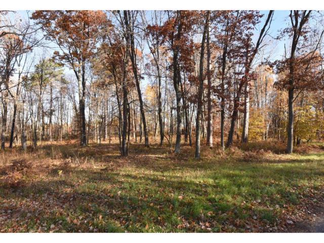 Lot4, Block1 Elk Horn Court, Merrifield, MN 56465 (#4435245) :: Olsen Real Estate Group