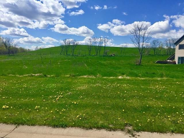 213 Amber View St, Menomonie, WI 54751 (#4545238) :: Twin Cities Elite Real Estate Group   TheMLSonline