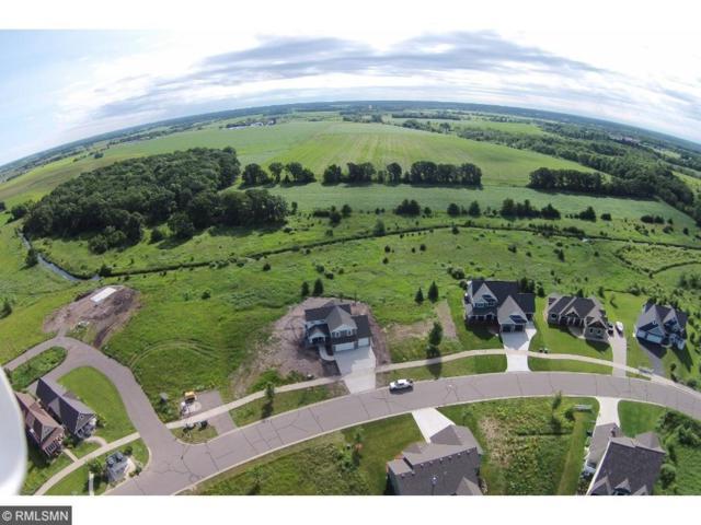 3301 Old Stone Way NE, Sauk Rapids, MN 56379 (#4551653) :: Olsen Real Estate Group