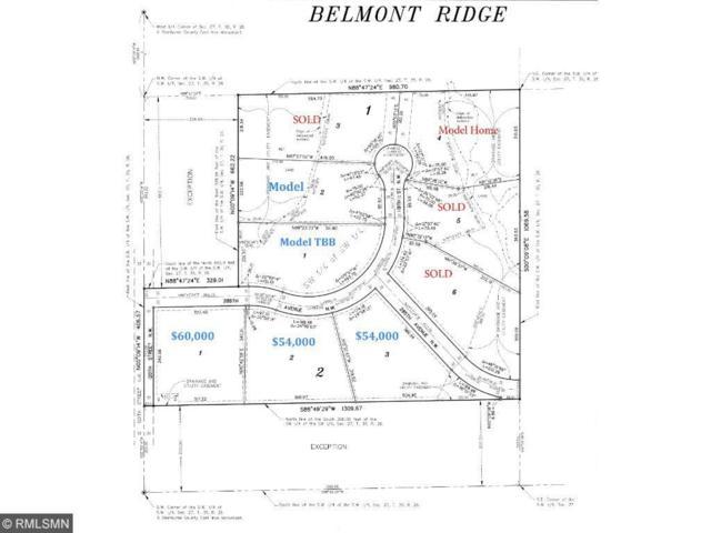 xxxx 120th Street, Baldwin Twp, MN 55371 (#4796204) :: The Preferred Home Team