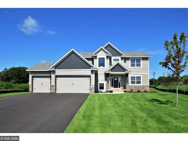 14462 Juniper Street NW, Andover, MN 55304 (#4799294) :: The Preferred Home Team