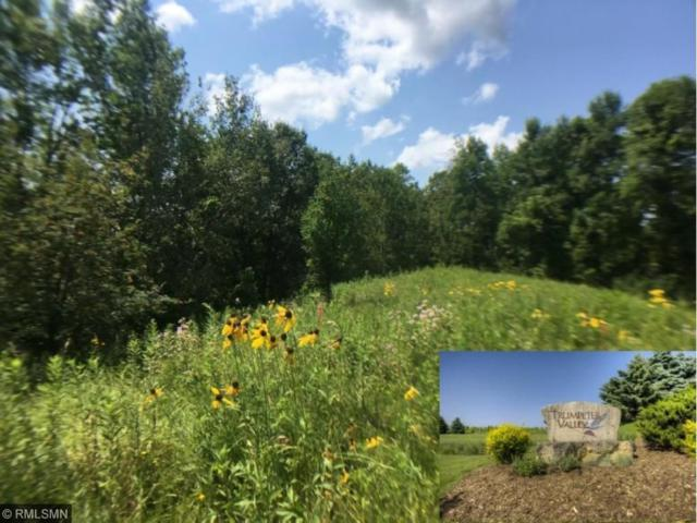 XXX (Lot 63) 446th Ave, Prescott, WI 54021 (#4818224) :: The Preferred Home Team
