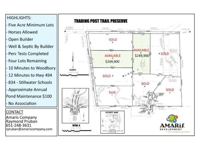 5131 Trading Post Trail S, Afton, MN 55001 (#4836685) :: The Sarenpa Team