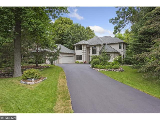 6495 Nez Perce Drive, Chanhassen, MN 55317 (#4854527) :: Norse Realty