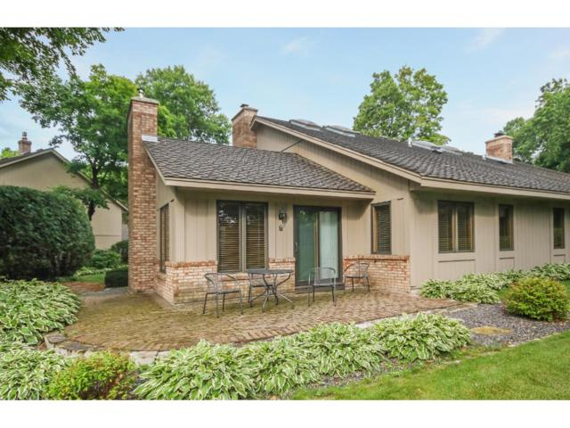 1107 Hollybrook Drive, Wayzata, MN 55391 (#4858277) :: House Hunters Minnesota- Keller Williams Classic Realty NW