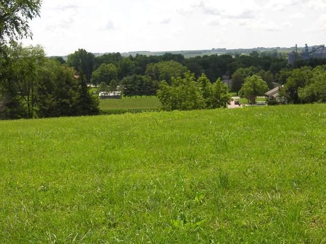 XXX Prairie View-Lot 4 Drive, Dennison, MN 55018 (#4866968) :: The Pietig Properties Group