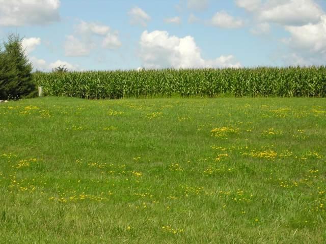 XX Prairie View-Lot 2 Drive, Dennison, MN 55018 (#4866995) :: The Pietig Properties Group