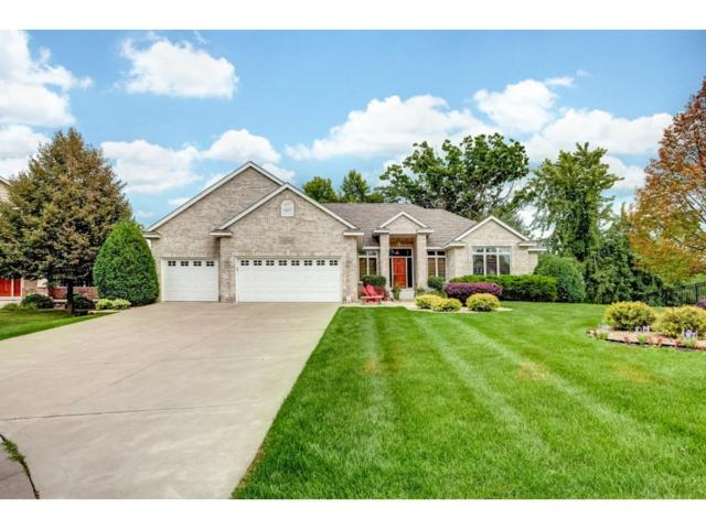 7150 Queensland Lane N, Maple Grove, MN 55311 (#4867315) :: The Search Houses Now Team