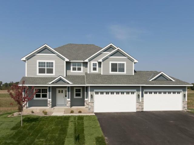 1101 167th Avenue NW, Andover, MN 55304 (#4873565) :: The Preferred Home Team