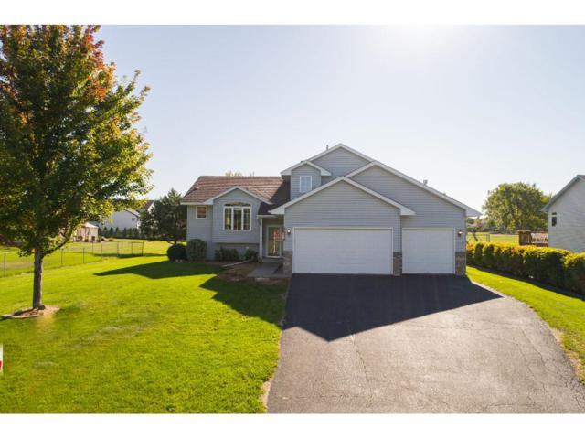 5676 Kalenda Drive NE, Albertville, MN 55301 (#4874125) :: The Preferred Home Team