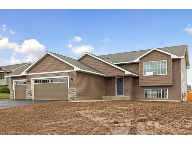 1005 Wyoming Street, Roberts, WI 54023 (#4894343) :: The Preferred Home Team