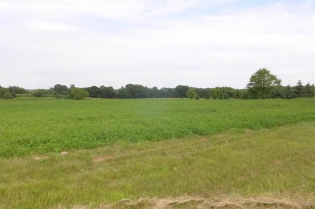 Lot 4 566th Avenue, Prescott, WI 54021 (#4898981) :: Olsen Real Estate Group
