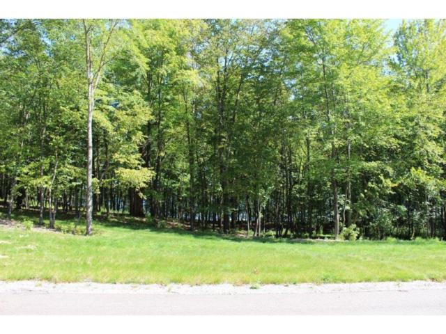 17605 Alexander Point Road, Cold Spring, MN 56320 (#4905598) :: The Preferred Home Team