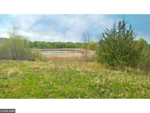 Lot 10 Blk 1 83rd Circle, Otsego, MN 55330 (#4909751) :: Olsen Real Estate Group