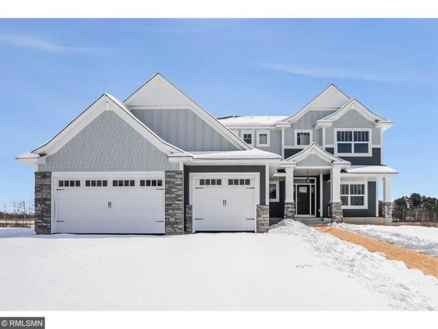 6586 Enid Trail, Lino Lakes, MN 55014 (#4910161) :: The Hergenrother Group North Suburban