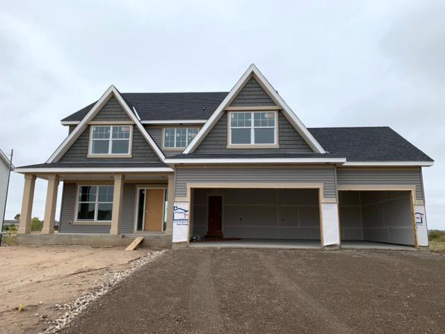 6615 96th Street S, Cottage Grove, MN 55016 (#4967724) :: The Hergenrother Group North Suburban