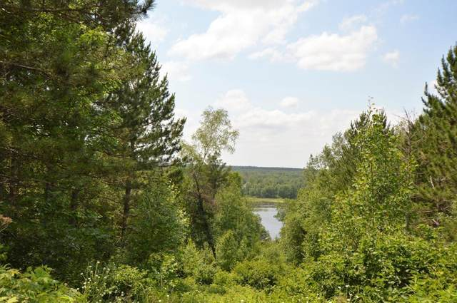xxx Alpine Circle Sw, Pillager, MN 56473 (#4974675) :: Bre Berry & Company