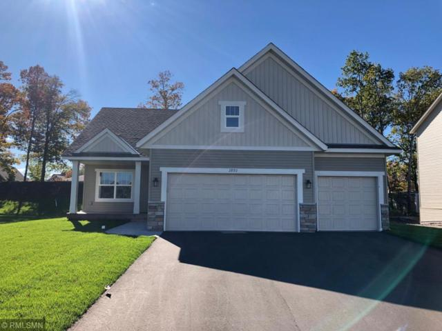 2892 129th Avenue NE, Blaine, MN 55449 (#4997875) :: The Sarenpa Team