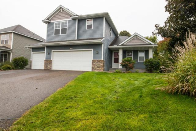 106 Grandview Court, Buffalo, MN 55313 (#5000513) :: The Snyder Team