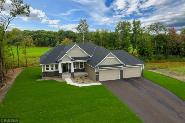 3823 166th Lane NE, Ham Lake, MN 55304 (#5001693) :: The Preferred Home Team