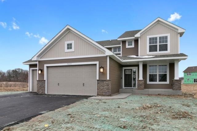 7203 208th Circle N, Forest Lake, MN 55025 (#5013459) :: The Snyder Team
