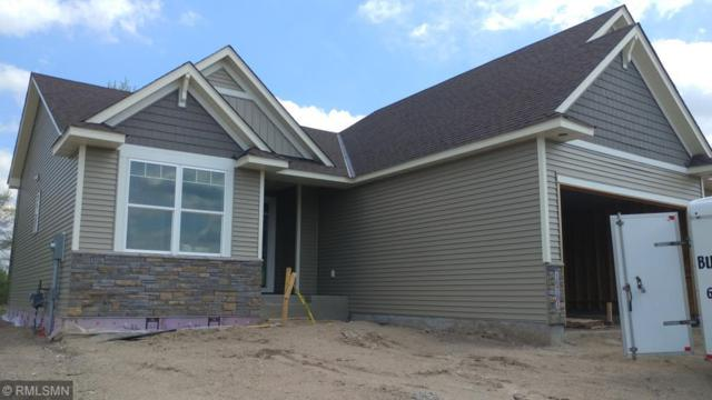 16781 72nd Circle Ne, Otsego, MN 55330 (#5016274) :: House Hunters Minnesota- Keller Williams Classic Realty NW