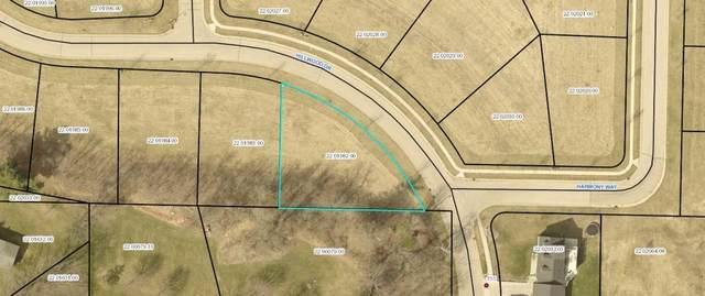 136 Hillwood Drive, Lake City, MN 55041 (#5032025) :: Carol Nelson   Edina Realty