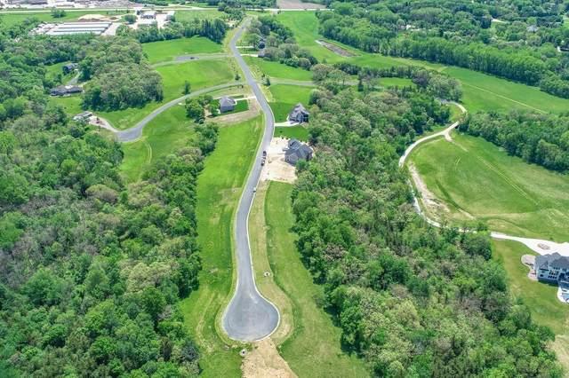 TBD Salley Ridge (L6b1) Lane NE, Rochester, MN 55906 (#5032799) :: Twin Cities South