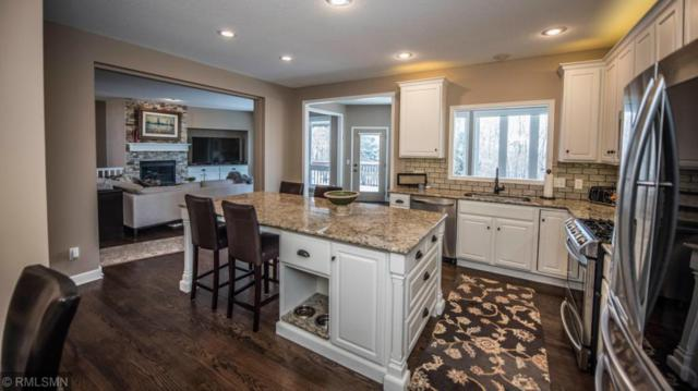 16557 Iredale Court, Lakeville, MN 55044 (#5132186) :: The MN Team