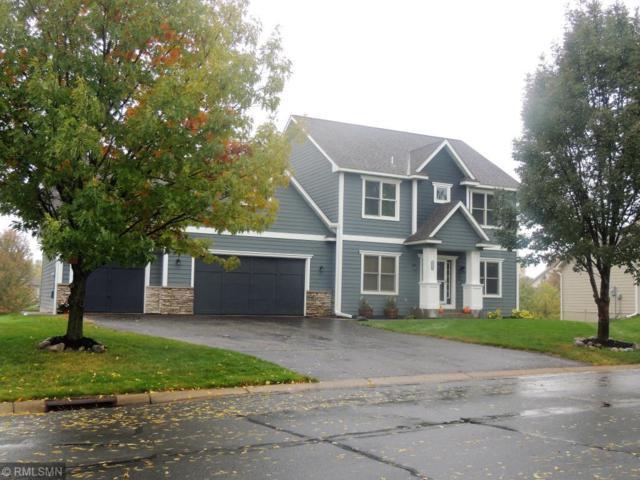 10800 Settlers Lane, Hanover, MN 55341 (#5139581) :: The Preferred Home Team