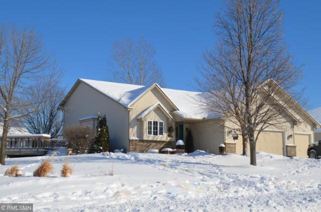 13852 Goldeneye Way, Rogers, MN 55374 (#5145393) :: The Sarenpa Team