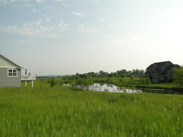 113 Emerald Lake Drive, Lake City, MN 55041 (#5202683) :: House Hunters Minnesota- Keller Williams Classic Realty NW