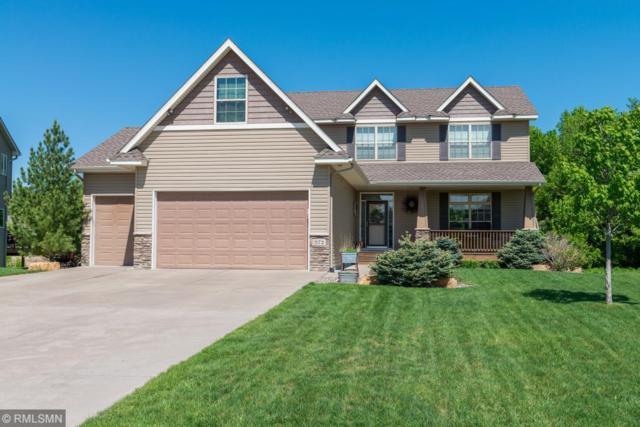 572 Kayla Lane, Hanover, MN 55341 (#5215923) :: House Hunters Minnesota- Keller Williams Classic Realty NW