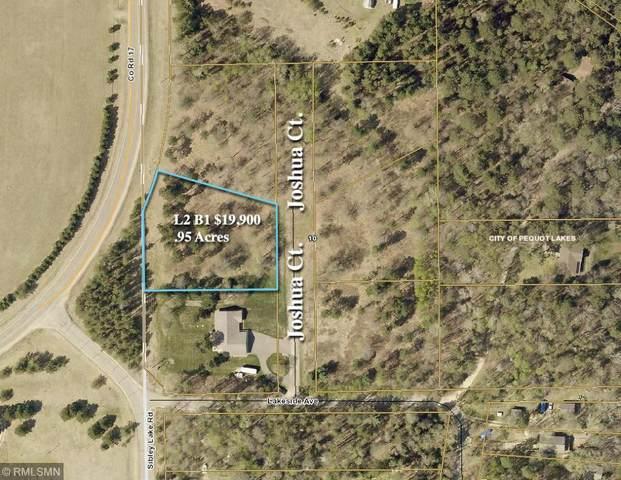 L2B1 Josh Court, Pequot Lakes, MN 56472 (#5227297) :: Twin Cities South