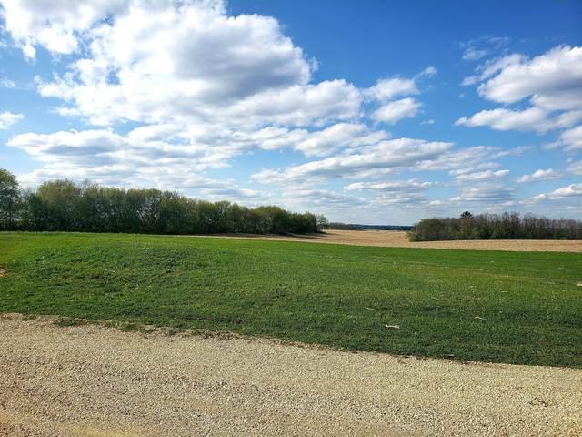 651 Enterprise Drive, Spring Grove, MN 55974 (#5229665) :: Carol Nelson | Edina Realty