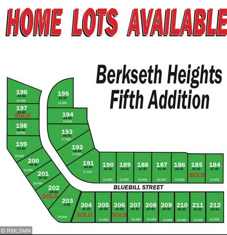 351 Lot 201 Bluebill Street, Baldwin, WI 54002 (#5295753) :: Bre Berry & Company