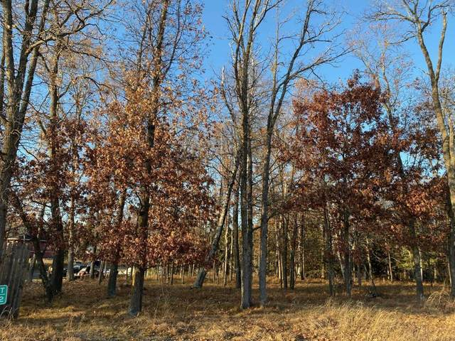 Lot2.Block1 Bald Eagle Trail, Crosslake, MN 56442 (#5331928) :: The Preferred Home Team