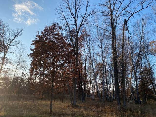 Lot6.Block1 Talon Trail, Crosslake, MN 56442 (#5332222) :: The Preferred Home Team
