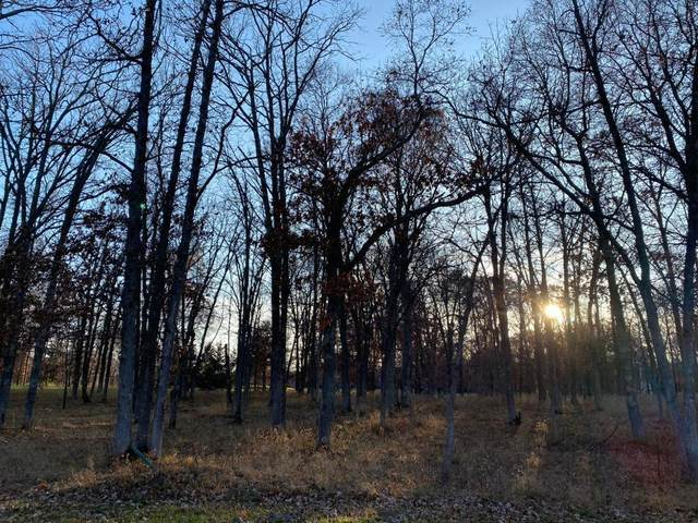 Lot7.Block2 Talon Trail, Crosslake, MN 56442 (#5332259) :: The Preferred Home Team