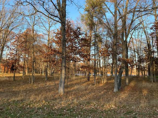 Lot6.Block3 Talon Trail, Crosslake, MN 56442 (#5332275) :: The Preferred Home Team