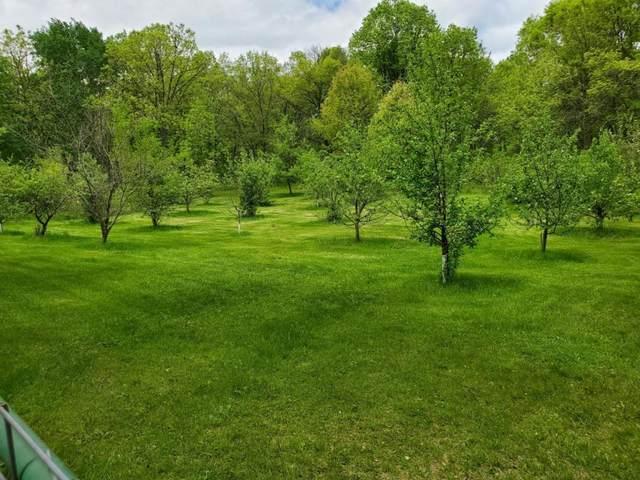 xxx Highway 27, Hillman, MN 56338 (#5499915) :: Straka Real Estate