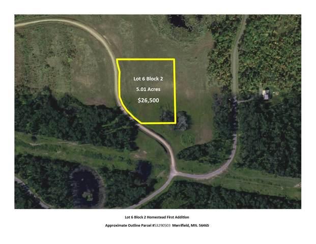 L6B2 Settler Trail, Merrifield, MN 56465 (#5505942) :: The Pietig Properties Group