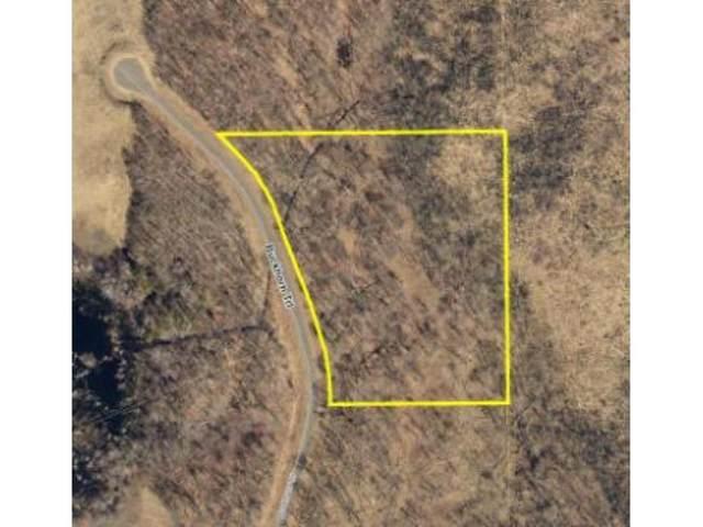 L2B1 Buckhorn Trail, Merrifield, MN 56465 (#5506007) :: The Pietig Properties Group