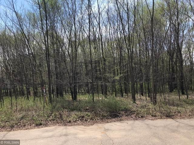 Lot 30 Tanglewood Ct, Pepin, WI 54759 (MLS #5557061) :: RE/MAX Signature Properties