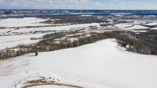 Lot 10 Bl 2 667th St, Wabasha, MN 55981 (#5571062) :: The Pietig Properties Group